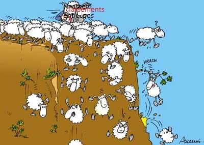 Des-moutons-de-Panurge-se-jettent-dans-un-ravin
